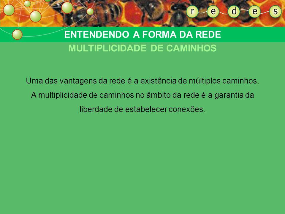 ENTENDENDO A FORMA DA REDE MULTIPLICIDADE DE CAMINHOS