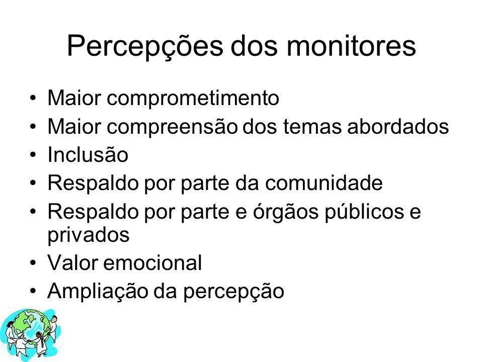 Percepções dos monitores