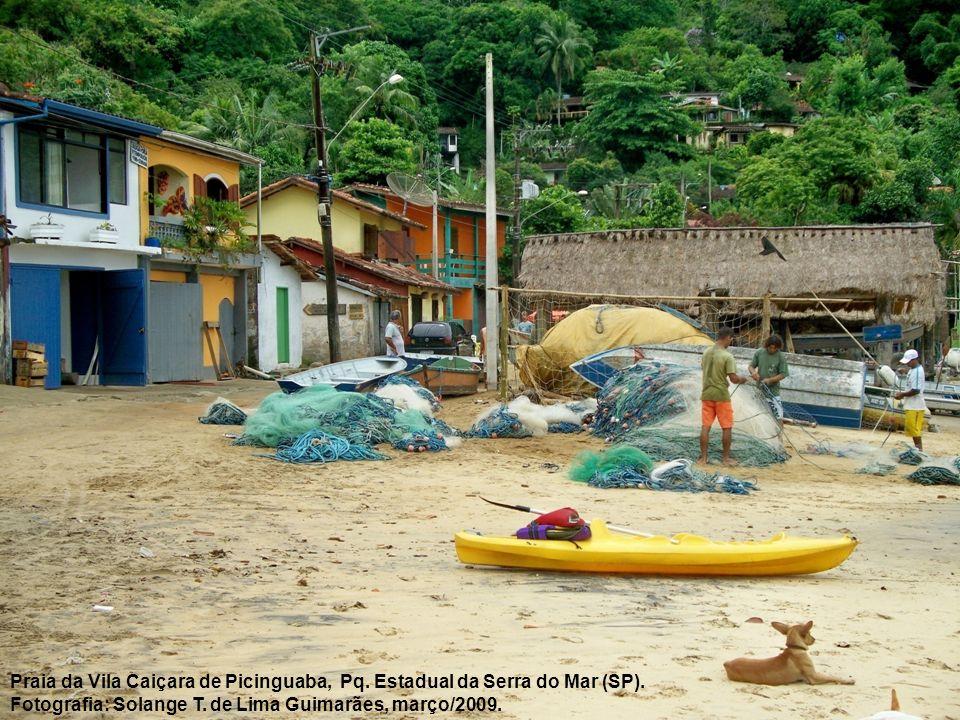 Praia da Vila Caiçara de Picinguaba, Pq. Estadual da Serra do Mar (SP).