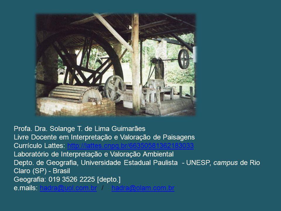 Profa. Dra. Solange T. de Lima Guimarães