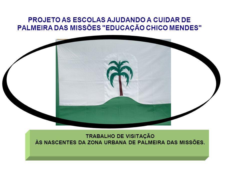 PROJETO AS ESCOLAS AJUDANDO A CUIDAR DE PALMEIRA DAS MISSÕES EDUCAÇÃO CHICO MENDES