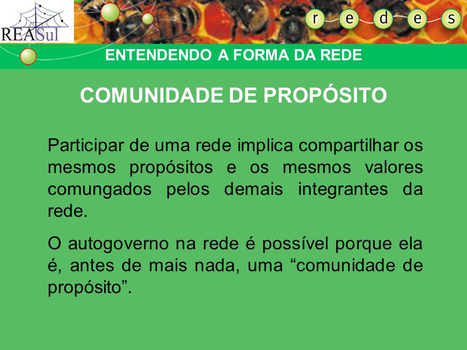 ENTENDENDO A FORMA DA REDE COMUNIDADE DE PROPÓSITO