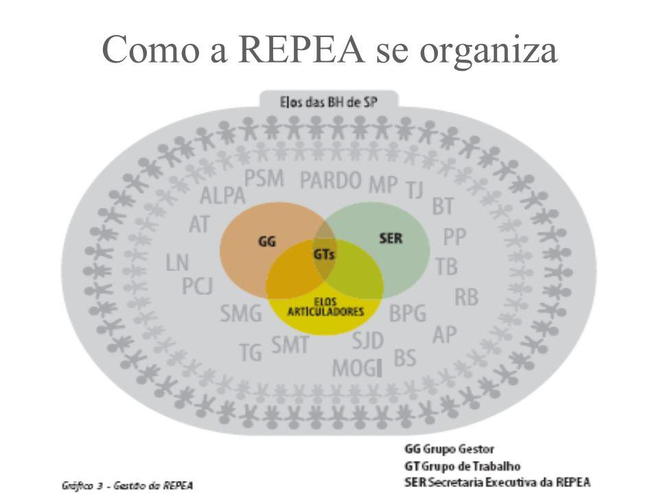 Como a REPEA se organiza