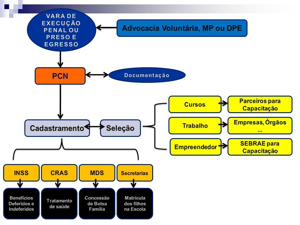 Advocacia Voluntária, MP ou DPE PCN Cadastramento Seleção