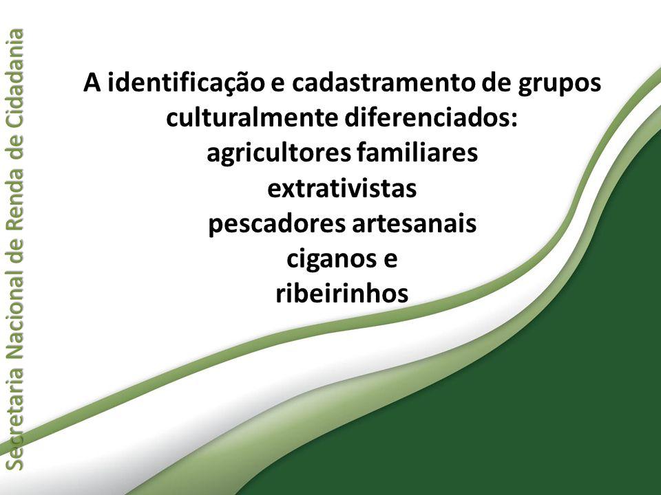 A identificação e cadastramento de grupos culturalmente diferenciados: agricultores familiares extrativistas pescadores artesanais ciganos e ribeirinhos