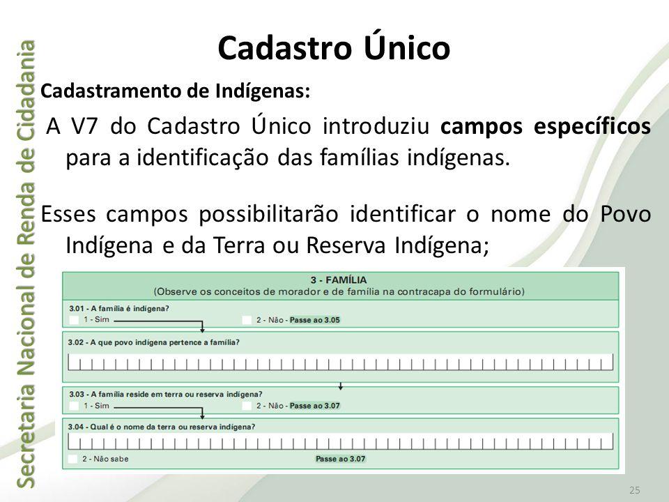 Cadastro Único Cadastramento de Indígenas: A V7 do Cadastro Único introduziu campos específicos para a identificação das famílias indígenas.