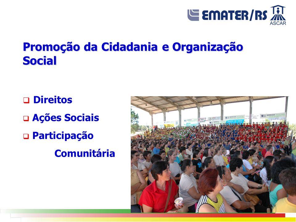 Promoção da Cidadania e Organização Social
