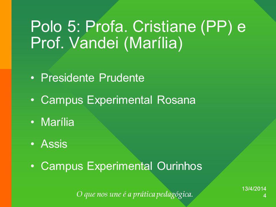 Polo 5: Profa. Cristiane (PP) e Prof. Vandei (Marília)