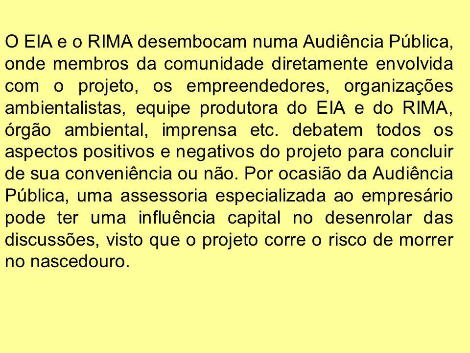O EIA e o RIMA desembocam numa Audiência Pública, onde membros da comunidade diretamente envolvida com o projeto, os empreendedores, organizações ambientalistas, equipe produtora do EIA e do RIMA, órgão ambiental, imprensa etc.