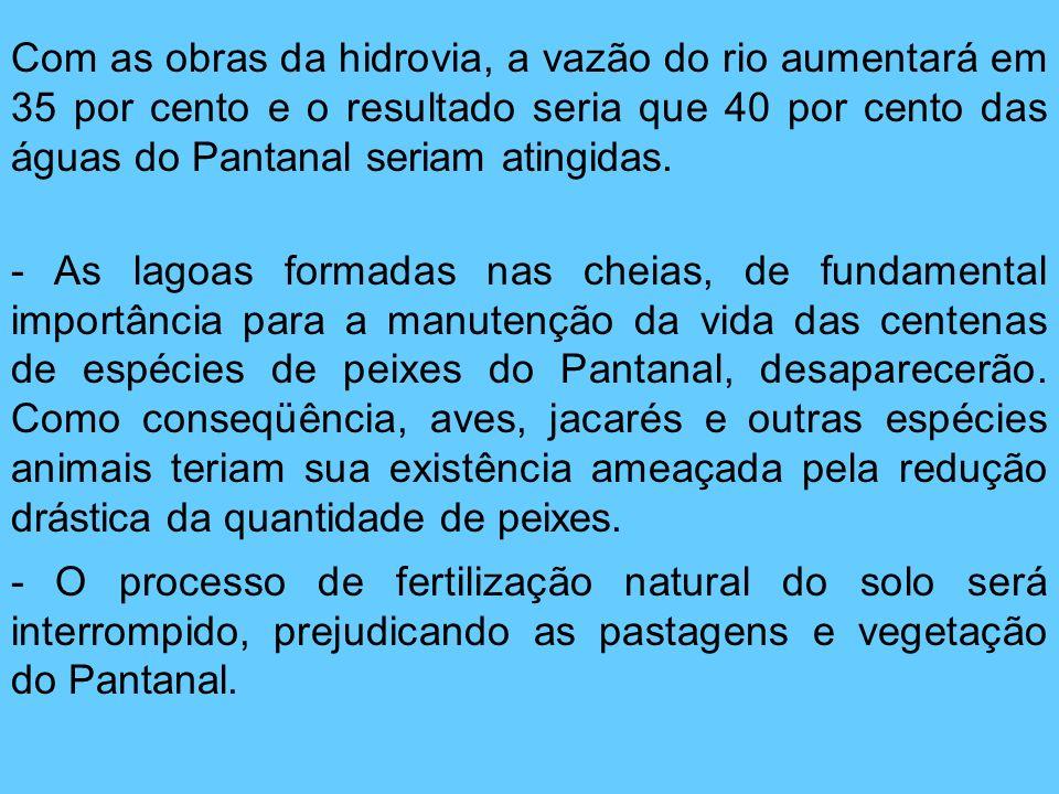 Com as obras da hidrovia, a vazão do rio aumentará em 35 por cento e o resultado seria que 40 por cento das águas do Pantanal seriam atingidas.