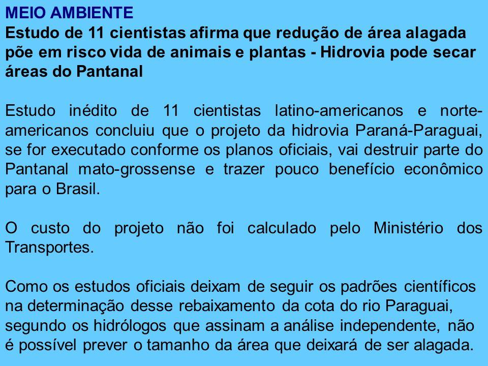 MEIO AMBIENTE Estudo de 11 cientistas afirma que redução de área alagada põe em risco vida de animais e plantas - Hidrovia pode secar áreas do Pantanal