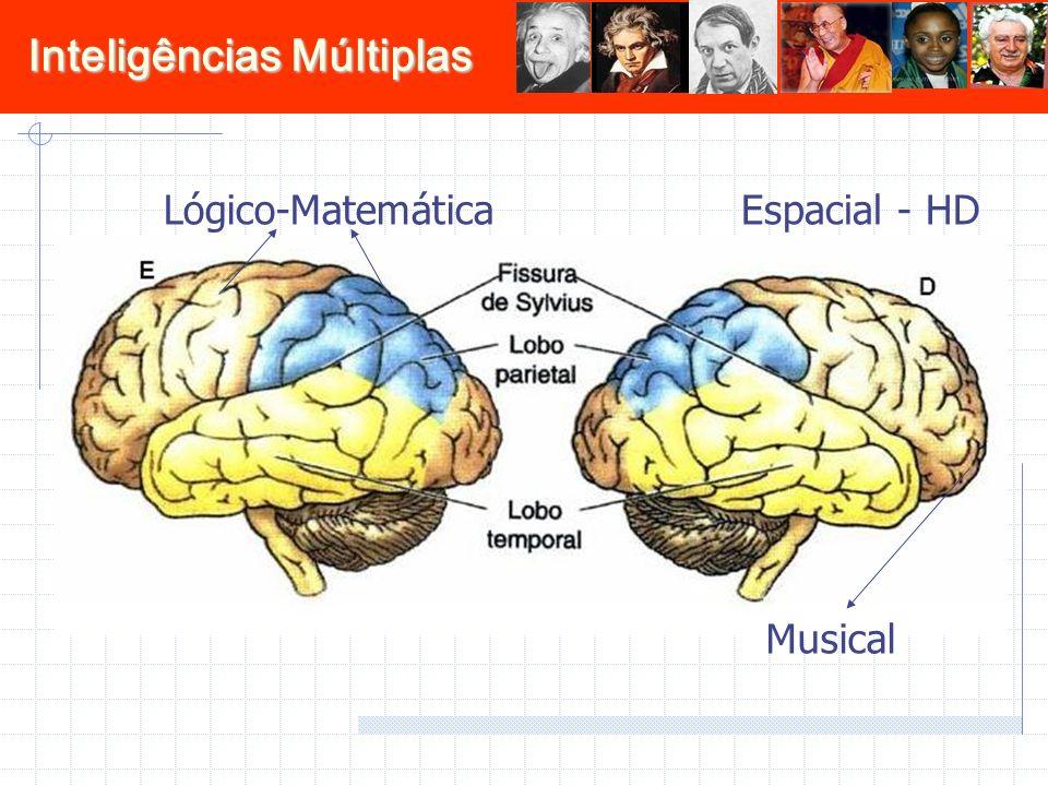Lógico-Matemática Espacial - HD Musical 21