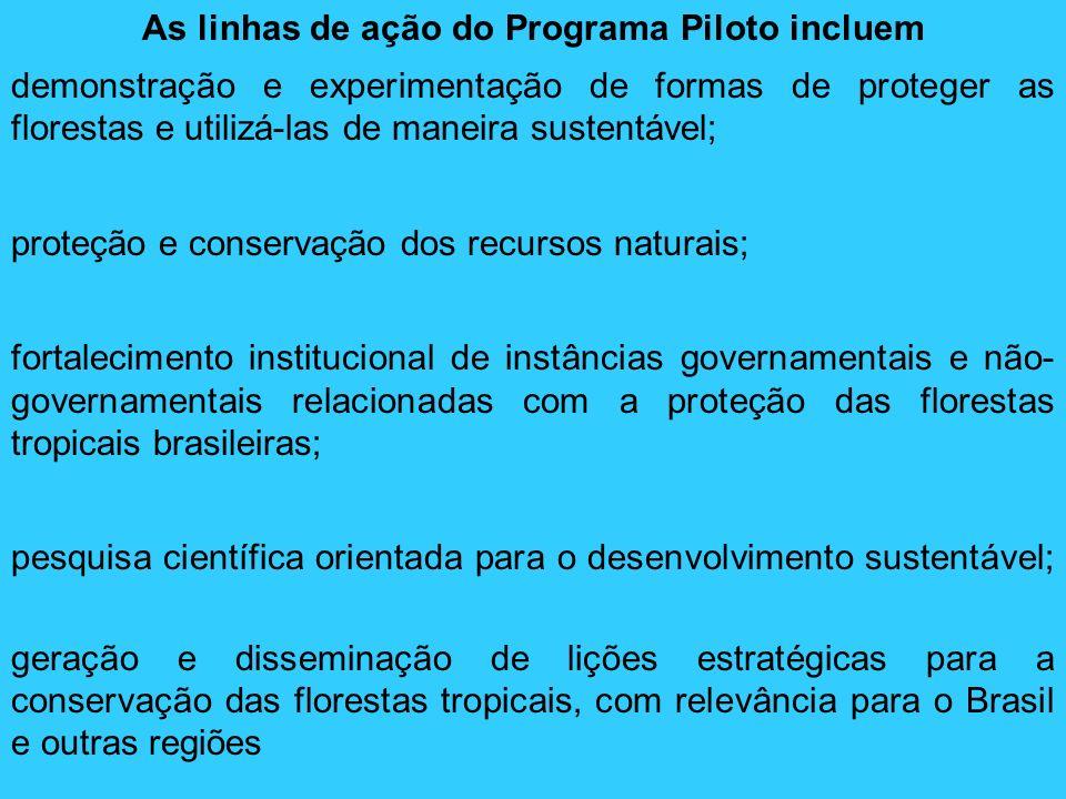 As linhas de ação do Programa Piloto incluem
