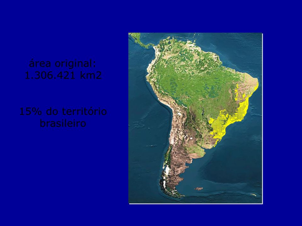 15% do território brasileiro