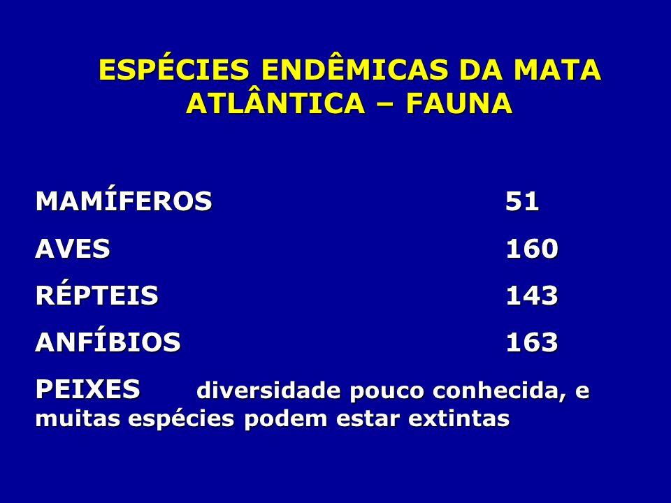 ESPÉCIES ENDÊMICAS DA MATA ATLÂNTICA – FAUNA