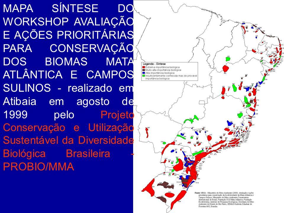 MAPA SÍNTESE DO WORKSHOP AVALIAÇÃO E AÇÕES PRIORITÁRIAS PARA CONSERVAÇÃO DOS BIOMAS MATA ATLÂNTICA E CAMPOS SULINOS - realizado em Atibaia em agosto de 1999 pelo Projeto Conservação e Utilização Sustentável da Diversidade Biológica Brasileira - PROBIO/MMA