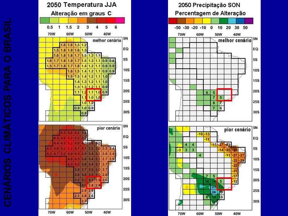CENÁRIOS CLIMÁTICOS PARA O BRASIL