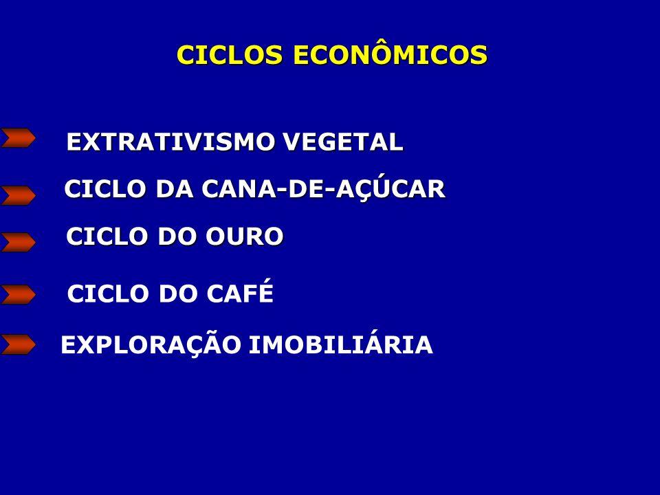 CICLO DA CANA-DE-AÇÚCAR EXPLORAÇÃO IMOBILIÁRIA