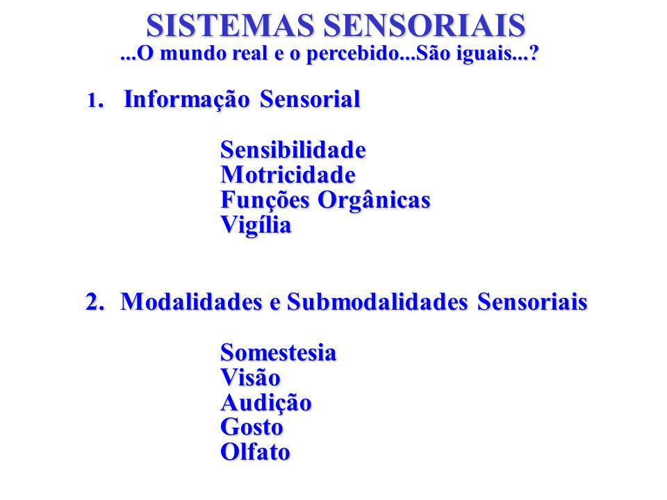 SISTEMAS SENSORIAIS Sensibilidade Motricidade Funções Orgânicas