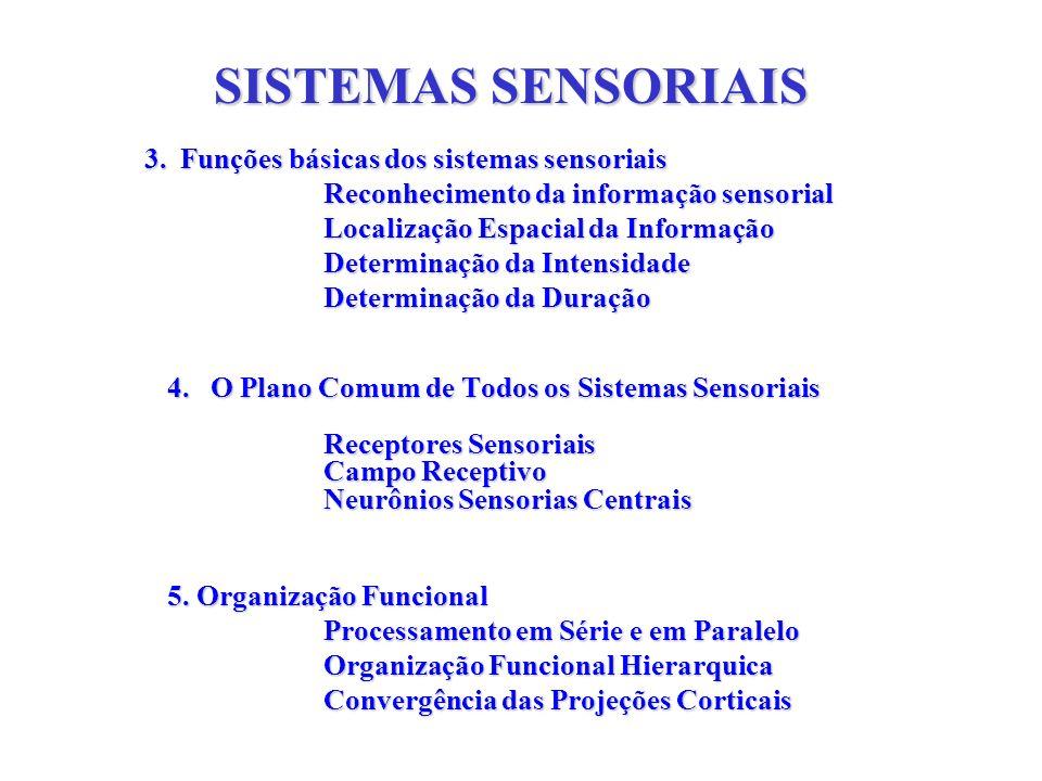 SISTEMAS SENSORIAIS 3. Funções básicas dos sistemas sensoriais