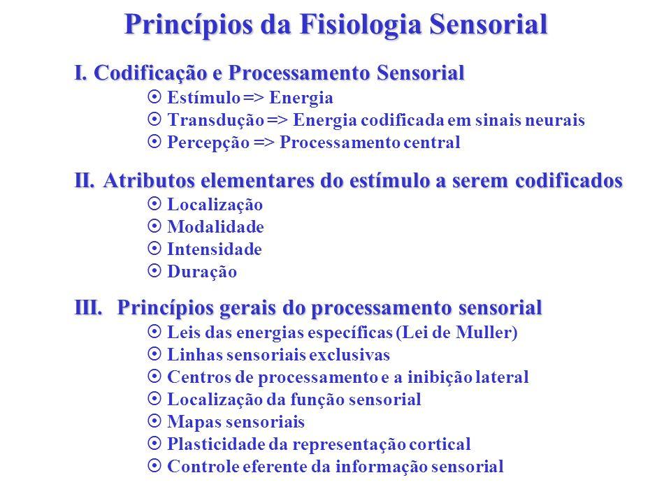 Princípios da Fisiologia Sensorial