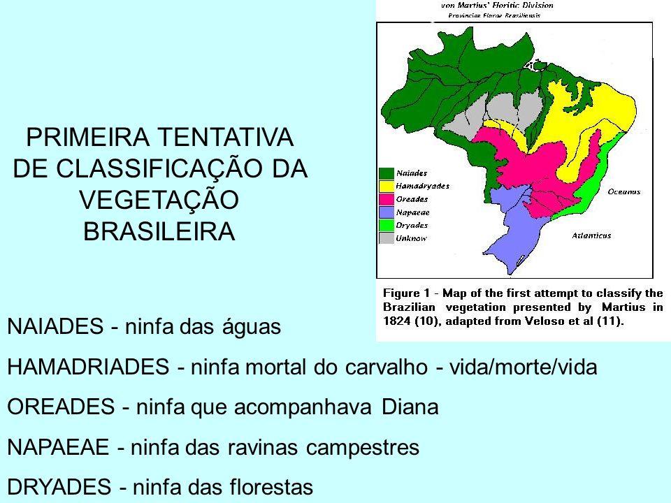 PRIMEIRA TENTATIVA DE CLASSIFICAÇÃO DA VEGETAÇÃO BRASILEIRA