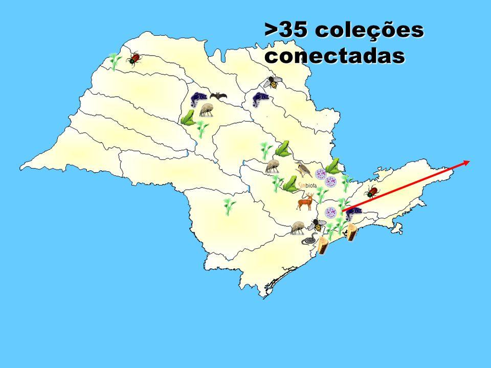 >35 coleções conectadas