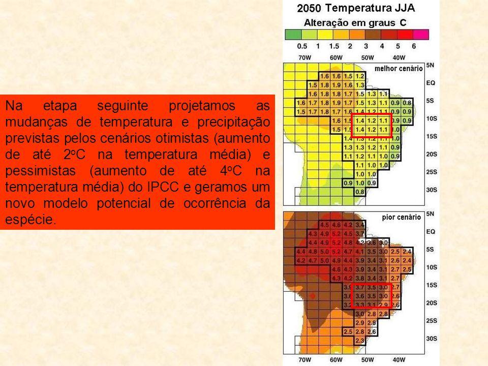 Na etapa seguinte projetamos as mudanças de temperatura e precipitação previstas pelos cenários otimistas (aumento de até 2oC na temperatura média) e pessimistas (aumento de até 4oC na temperatura média) do IPCC e geramos um novo modelo potencial de ocorrência da espécie.