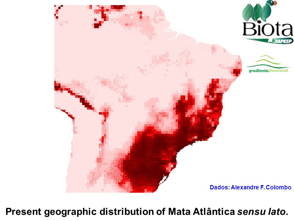 Present geographic distribution of Mata Atlântica sensu lato.