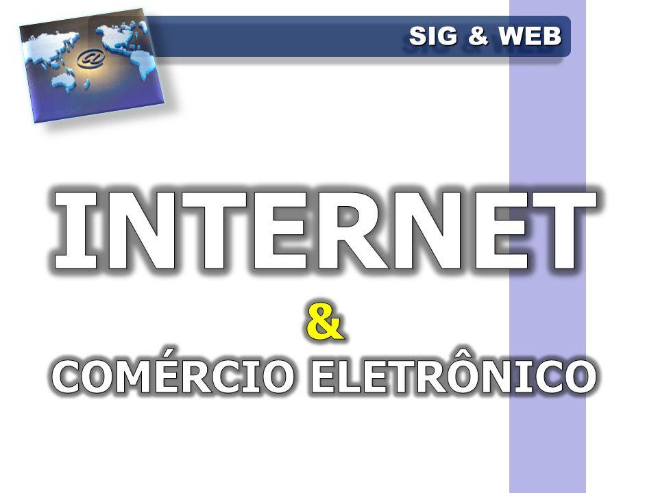 INTERNET & COMÉRCIO ELETRÔNICO SIG & WEB FCETM - Administração