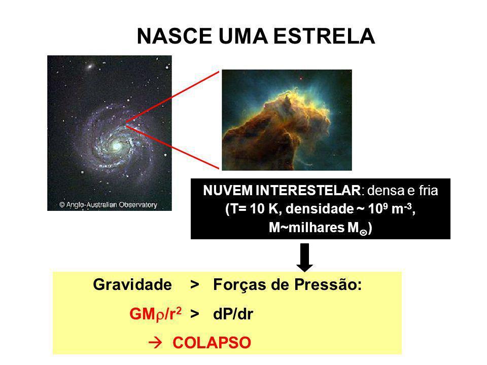 NASCE UMA ESTRELA Gravidade > Forças de Pressão: GM/r2 > dP/dr