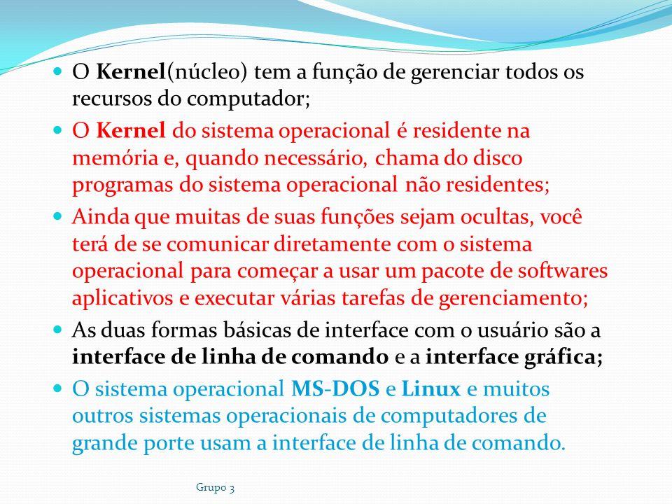 O Kernel(núcleo) tem a função de gerenciar todos os recursos do computador;