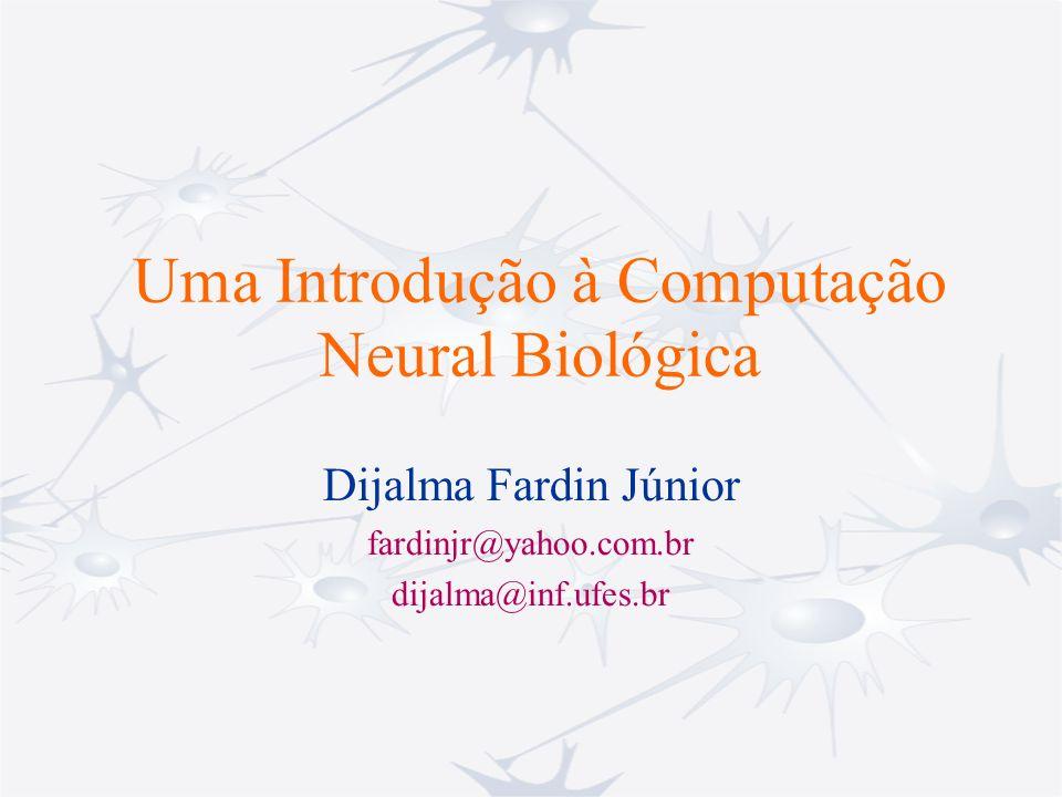 Uma Introdução à Computação Neural Biológica