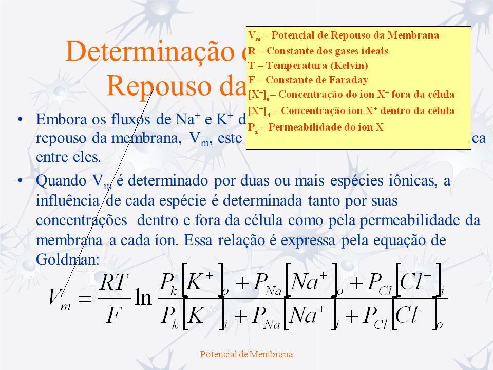 Determinação do Potencial de Repouso da Membrana