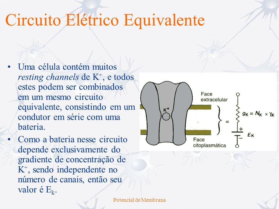 Circuito Elétrico Equivalente