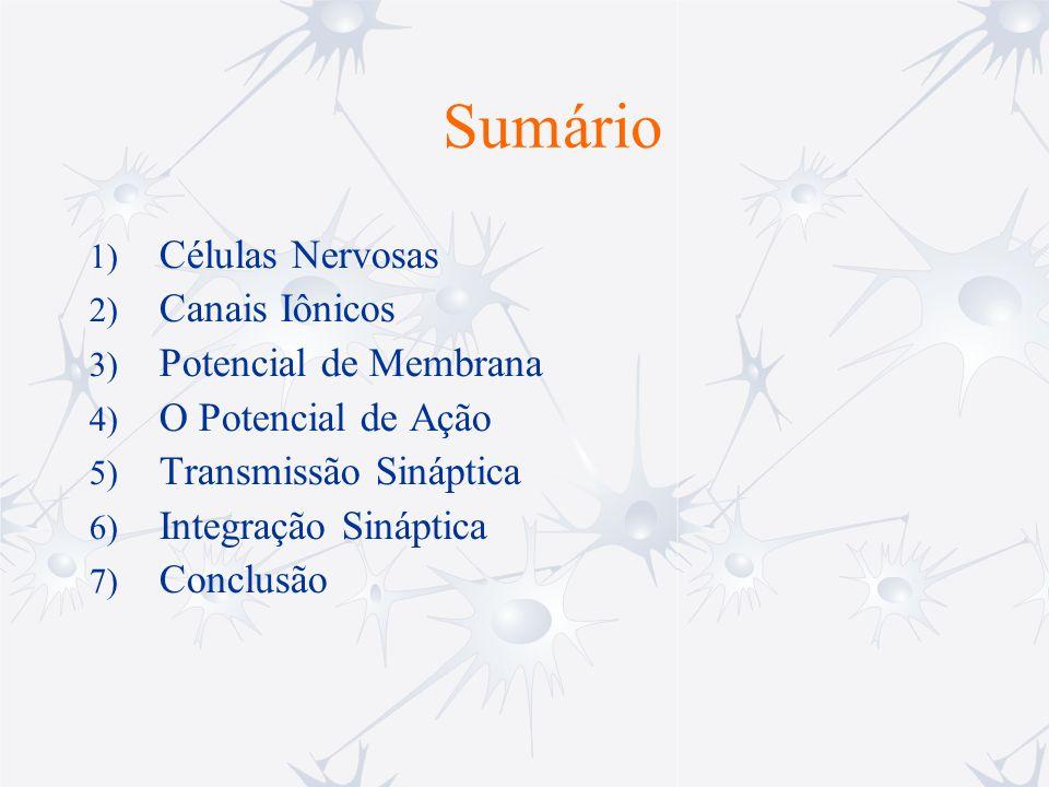 Sumário Células Nervosas Canais Iônicos Potencial de Membrana