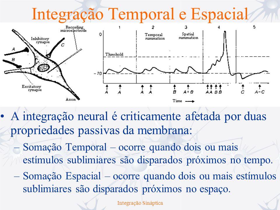 Integração Temporal e Espacial