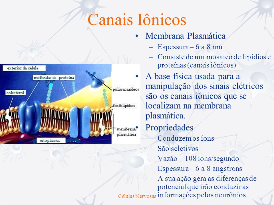 Canais Iônicos Membrana Plasmática