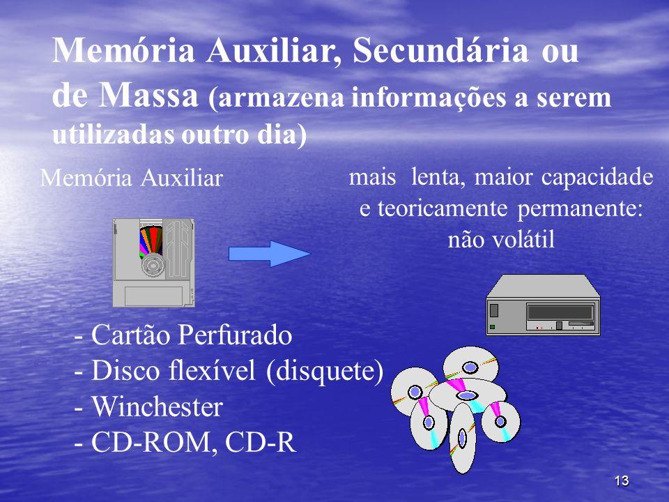 Memória Auxiliar, Secundária ou de Massa (armazena informações a serem utilizadas outro dia)