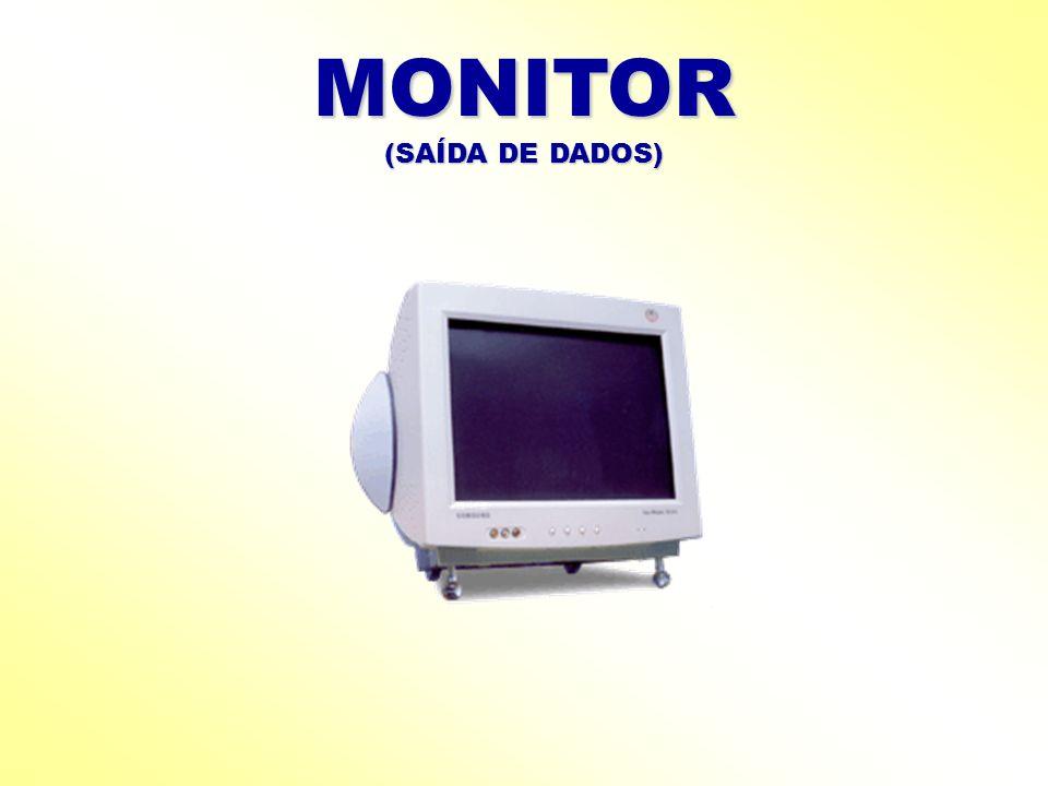 MONITOR (SAÍDA DE DADOS)