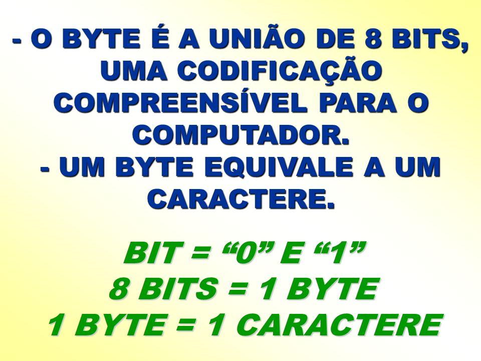 BIT = 0 E 1 8 BITS = 1 BYTE 1 BYTE = 1 CARACTERE