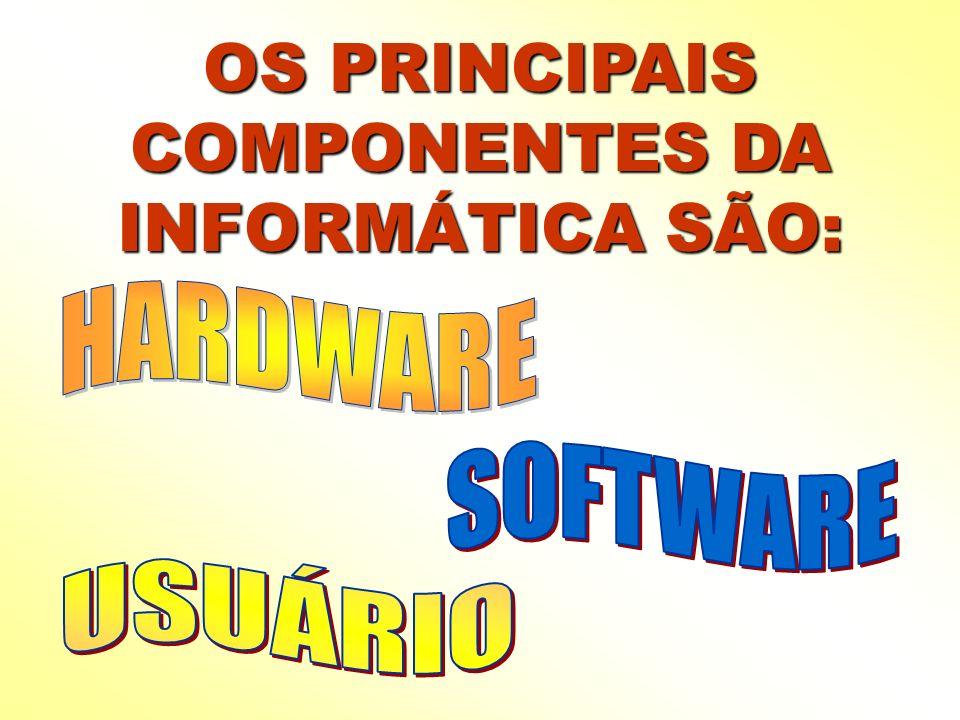 OS PRINCIPAIS COMPONENTES DA INFORMÁTICA SÃO: