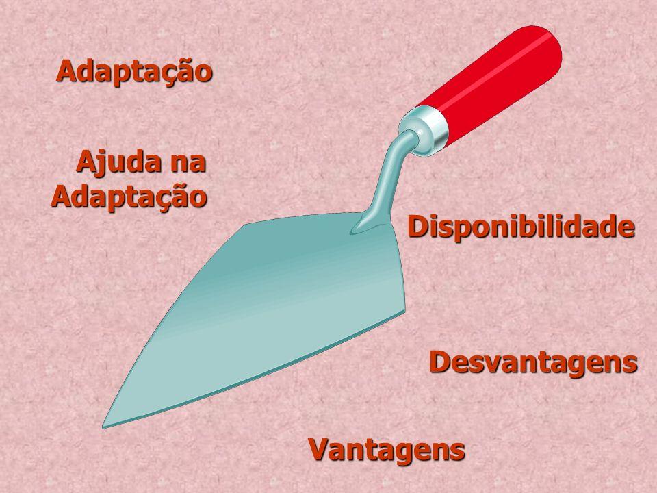 Adaptação Ajuda na Adaptação Disponibilidade Desvantagens Vantagens