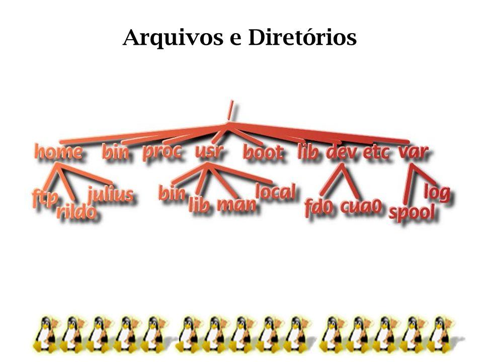 Arquivos e Diretórios