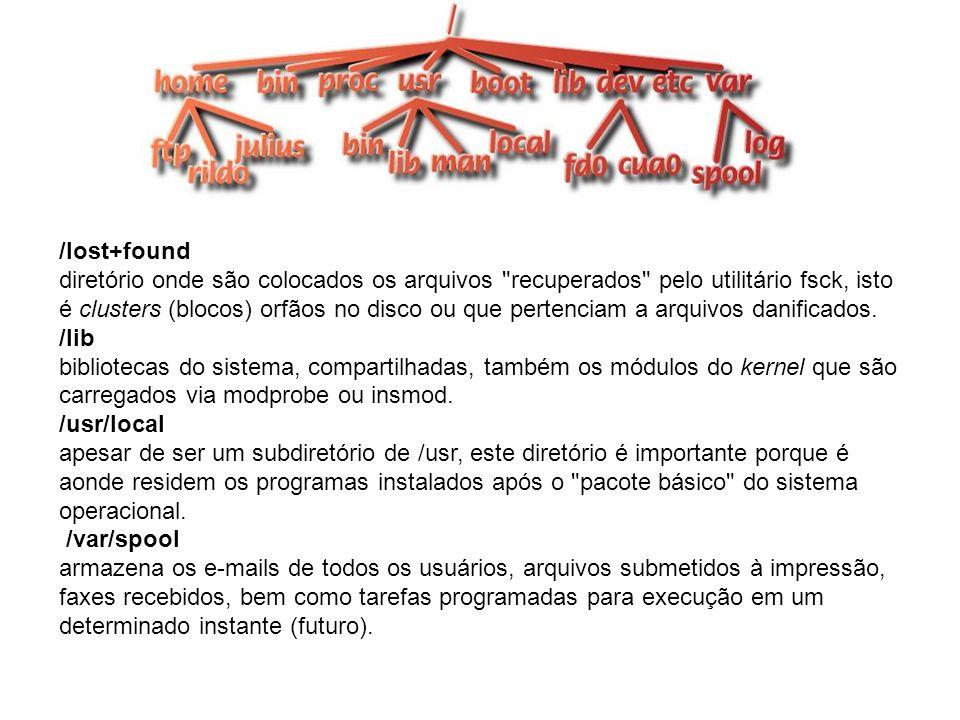 /lost+found