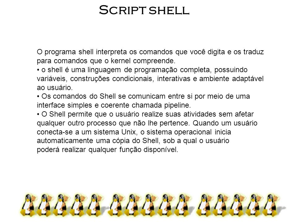 Script shell O programa shell interpreta os comandos que você digita e os traduz para comandos que o kernel compreende.