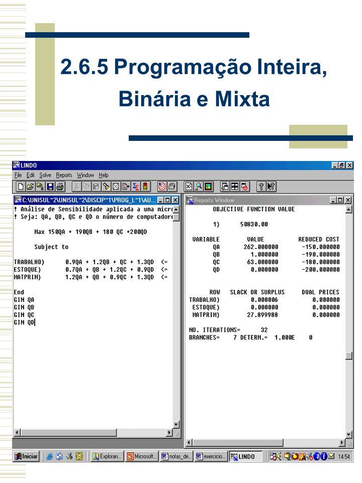 2.6.5 Programação Inteira, Binária e Mixta