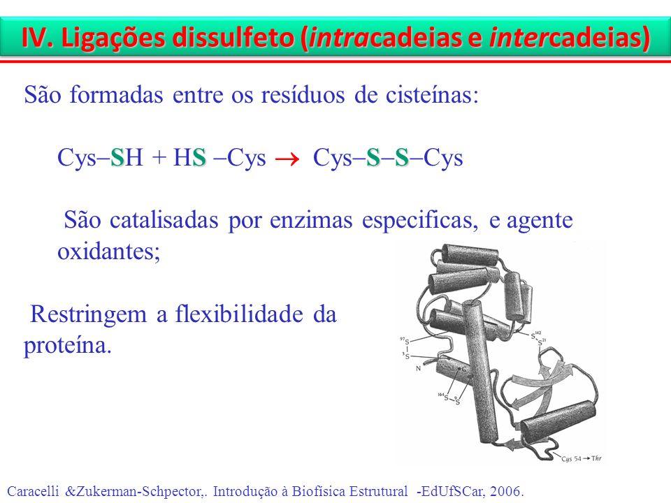 IV. Ligações dissulfeto (intracadeias e intercadeias)