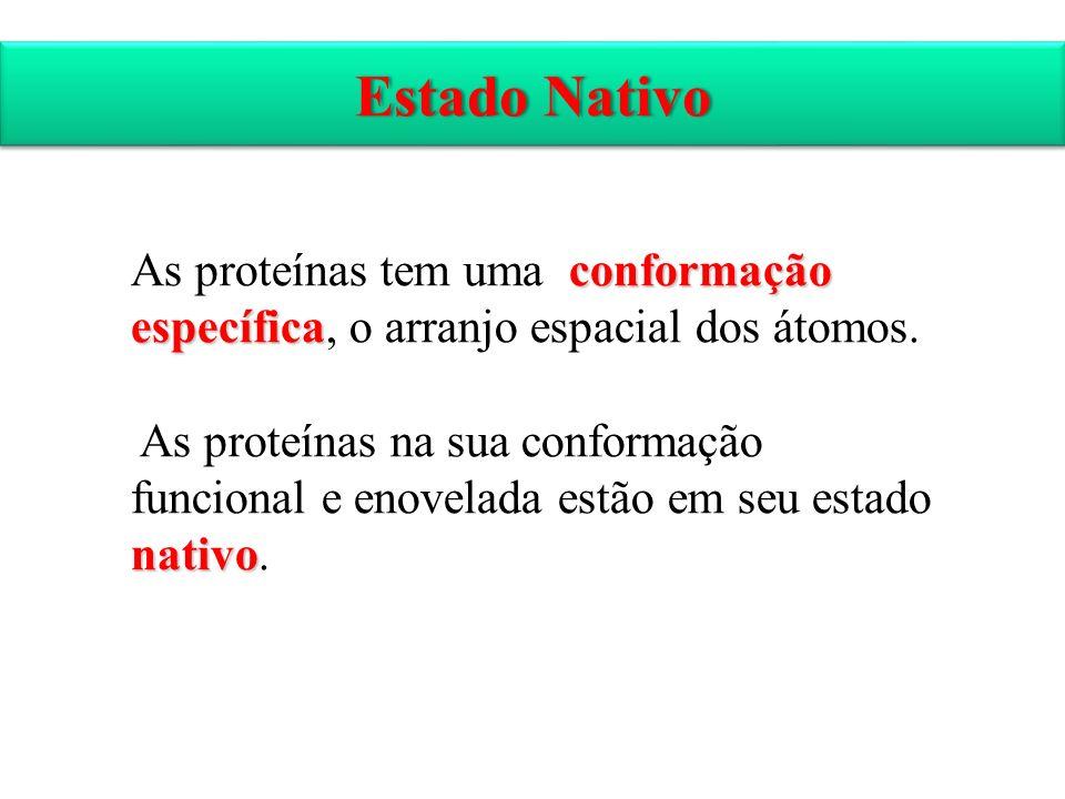 Estado Nativo As proteínas tem uma conformação específica, o arranjo espacial dos átomos.