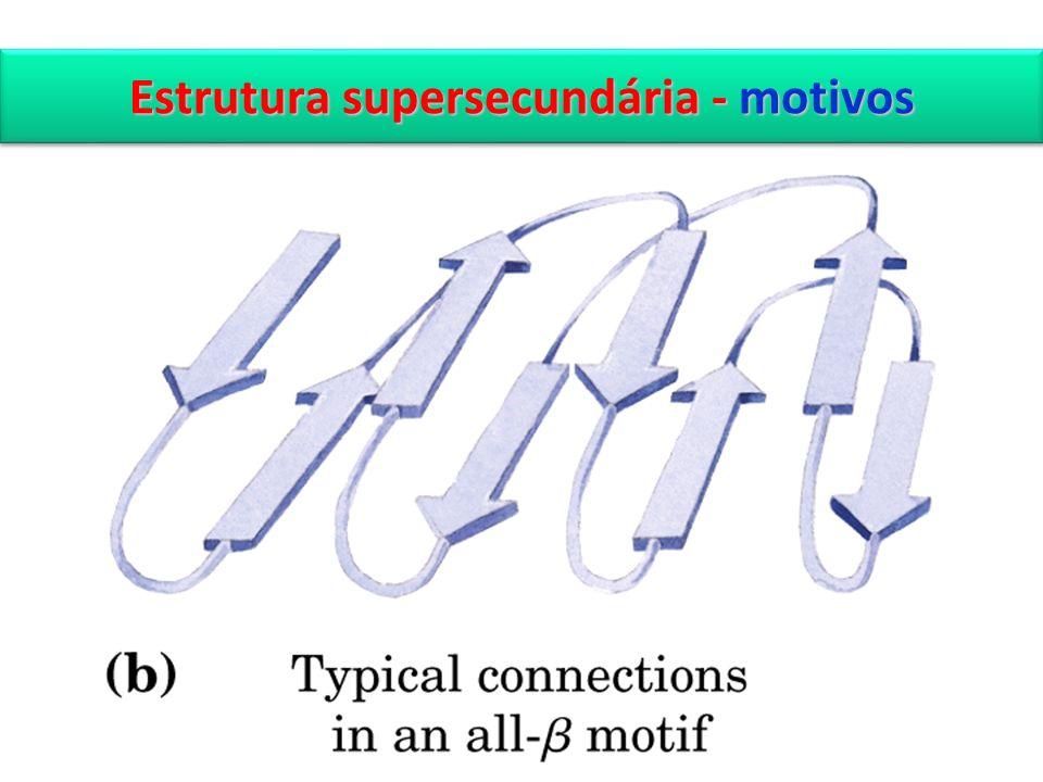 Estrutura supersecundária - motivos